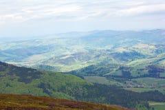 Montanhas com árvores e o abeto verdes Imagens de Stock Royalty Free