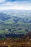 Montanhas com abeto Imagens de Stock Royalty Free