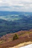 Montanhas com o um abeto no centr Fotos de Stock Royalty Free