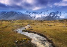 Montanhas com picos cobertos de neve, rio pequeno, grama amarela foto de stock royalty free