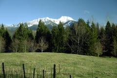 Montanhas da cascata Foto de Stock Royalty Free