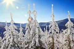 Montanhas da paisagem do inverno Imagem de Stock Royalty Free