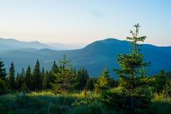 Montanhas da paisagem do verão Imagem de Stock Royalty Free