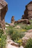 Montanhas da superstição do Arizona imagem de stock