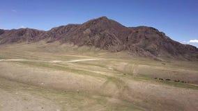Montanhas de Altai Paisagem bonita das montanhas Rússia sibéria Voo no quadcopter video estoque
