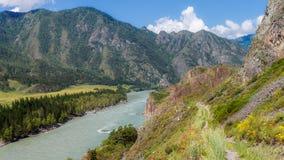 Montanhas de Altai, rio de Katun Foto de Stock