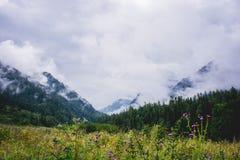 Montanhas de Altay Fotos de Stock Royalty Free