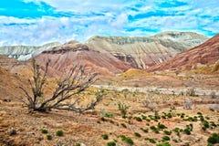 Montanhas de Altyn Emel Aktau em Kazakhstan Imagem de Stock Royalty Free