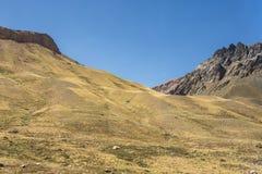 Montanhas de Andes do chileno com campos amarelos imagens de stock