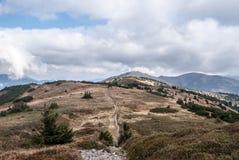 Montanhas de Autumn Nizke Tatry em Eslováquia com montes, prados da montanha, mugo do pinus e o céu azul com nuvens Imagens de Stock