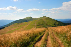 Montanhas de Bieszczady, Polonina Wetlinska Imagens de Stock