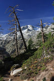 Montanhas de Córsega, fuga GR20 Foto de Stock