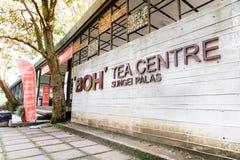 MONTANHAS DE CAMERON, MALÁSIA, O 6 DE ABRIL DE 2019: O centro do chá de BOH Sungai Palas oferece a vista cênico com café e loja fotografia de stock royalty free