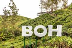 MONTANHAS DE CAMERON, MALÁSIA, O 6 DE ABRIL DE 2019: O centro do chá de BOH Sungai Palas oferece a vista cênico com café e loja,  imagens de stock royalty free