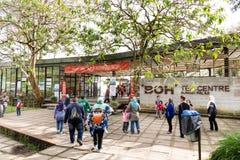 MONTANHAS DE CAMERON, MALÁSIA, O 6 DE ABRIL DE 2019: Turista que faz sua maneira ao centro do chá de BOH Sungai Palas, ponto popu fotos de stock