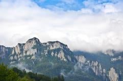 Montanhas de Carpathians Imagens de Stock Royalty Free