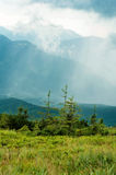 Montanhas de Carpathians fotos de stock royalty free