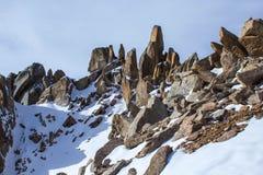 Montanhas de Cazaquistão Juventude máxima Imagem de Stock