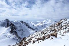 Montanhas de Cazaquistão Juventude máxima Imagens de Stock Royalty Free