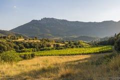 Montanhas de Corbieres, França Foto de Stock Royalty Free