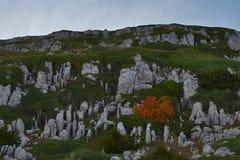 Montanhas de Crimeia foto de stock royalty free