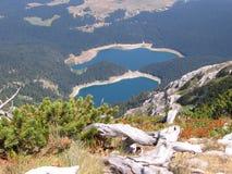 Montanhas de Crno Jezero (lago preto) Durmitor Fotos de Stock Royalty Free