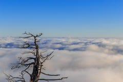 Montanhas de Deogyusan Foto de Stock