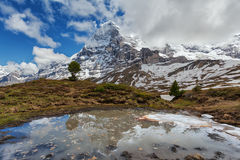 Montanhas de Eiger e de Jungfrau, Suíça Imagem de Stock