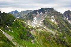 Montanhas de Fagaras em Romania Fotografia de Stock