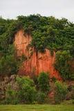 Montanhas de florestas da argila vermelha em Vietname fotografia de stock