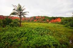 Montanhas de florestas da argila vermelha em Vietname imagem de stock
