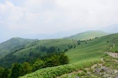 Montanhas de Fujimidai em Nagano/Gifu, Japão Imagem de Stock Royalty Free