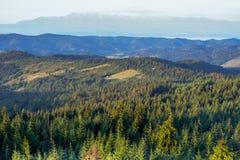 Montanhas de Gorce fotos de stock