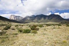 Montanhas de Guadalupe imagens de stock
