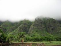 Montanhas de Havaí Fotografia de Stock