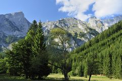 Montanhas de Hochschwab Imagens de Stock Royalty Free