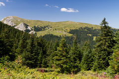Montanhas de Ilgaz Foto de Stock