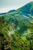 Montanhas de Karacol, rio, árvores, verão Imagem de Stock Royalty Free