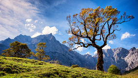 Montanhas de Karwendel imagem de stock royalty free