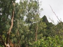 Montanhas de Koolau Fotografia de Stock