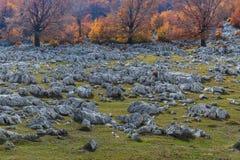 Montanhas de Mehedinti Imagens de Stock