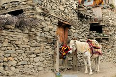 Montanhas de Nepal Himalaya imagem de stock