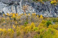 Montanhas de Noruega Foto de Stock