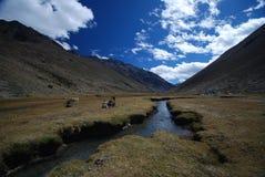 Montanhas de Peru fotos de stock royalty free