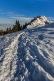 Montanhas de Postavaru no inverno, Romênia Imagem de Stock Royalty Free