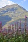 Montanhas de Pyrenees Fotos de Stock