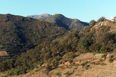 Montanhas de Pyrenees no francês Catalonia Imagens de Stock Royalty Free