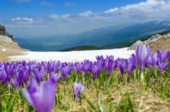 Montanhas de Rila Foto de Stock Royalty Free