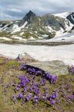 Montanhas de Rila Fotos de Stock
