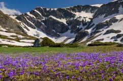 Montanhas de Rila Fotografia de Stock
